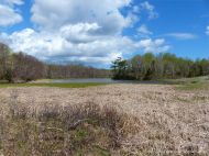 Marshy area on the margins of Ogden's Pond at Crystal Cliffs Beach