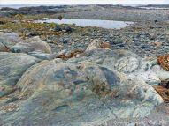 The rocky shore at Fourchu Head