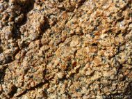 Detail of granite crystal texture at Rousse Point
