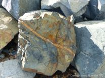 Patterned beach boulder at Rousse Point