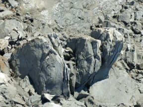 Fractured piece of Eype Clay Member material from a minor rock fall on cliffs at Seatown