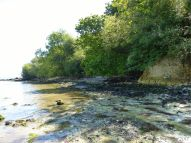 View of South Beach at Studland where the chalk rock platform is exposed
