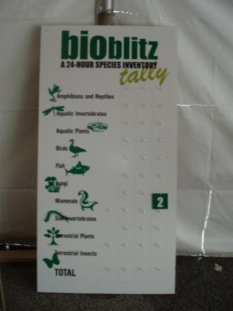 Bioblitz 3b