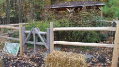 Split Rail Fence Around Butterfly Garden