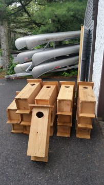 Wood Duck Boxes for Passaic River, Eagle Scout Project