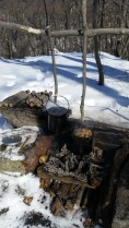 Venison and Chanterelle Stew and Black Birch Tea in Mors Pots