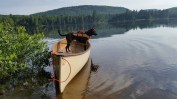 Oly on Mad River Explorer Canoe, Lake Lilla