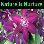 Nature is Nurture