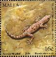 Gecko stamp