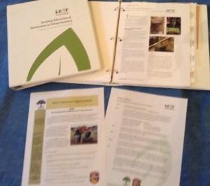 urban forestry, environmental education, Sacramento Tree Foundation, trees, canopy, Sacramento
