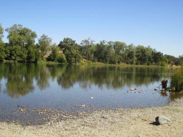 sand, American River, Fair Oaks, rooster, morning, Fair Oaks Bridge