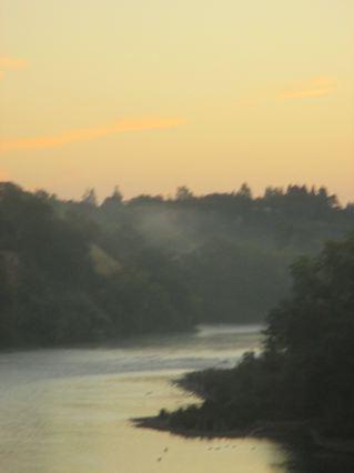 American River, sunrise, mist, morning, wildlife, Great Blue Heron, Canada Geese