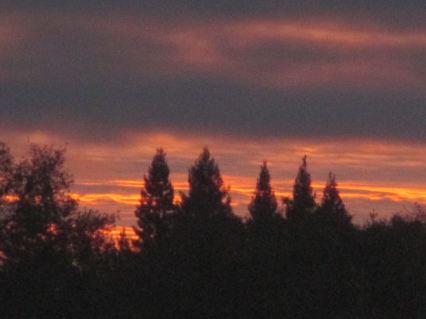 sunrise, morning, Fair Oaks, Fair Oaks Bridge, American River