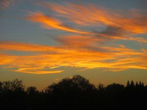 sunrise, morning, Fair Oaks, Fair Oaks Bridge, American River, water,