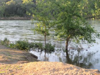 American River, flooded, water, riverbank