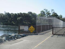 American River, cyclist, bridge, feeding