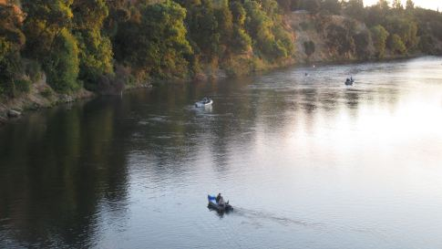 fishing boats, fisherman, salmon, American River, rituals, Fair Oaks Bridge, mornings,