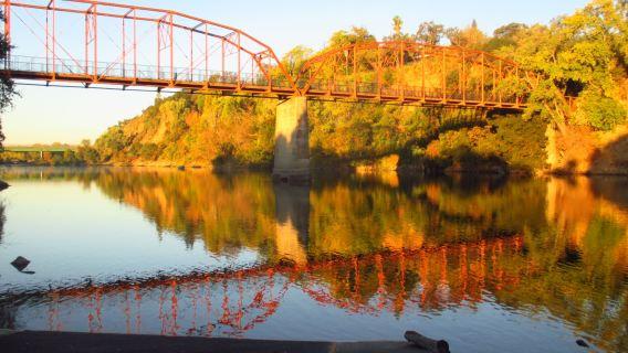Fair Oaks Bridge, American River, mornings, Great Blue Heron