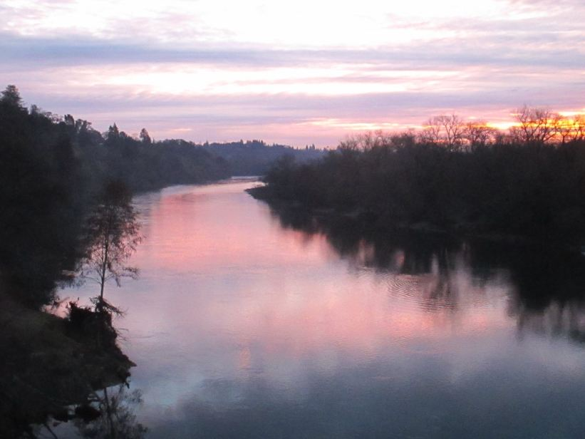 mornings, patterns, rituals, Fair Oaks, Fair Oaks Bridge, Fair Oaks Village, sunrise, chickens, ducks, Bufflehead, Canada Geese, ducks