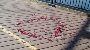 heart, Fair Oaks Bridge, deck mornings, roses