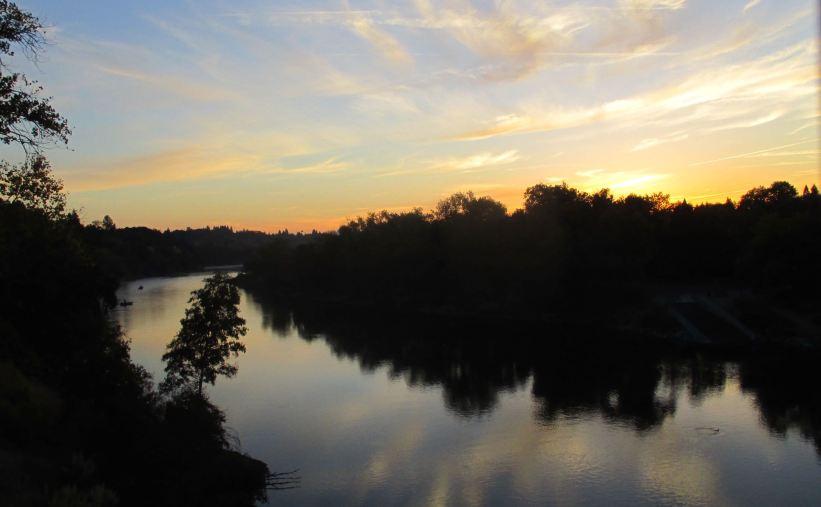 mornings, Fair Oaks Bridge, American River, American River Parkway, mornings, water, wildlife, nature, writing,