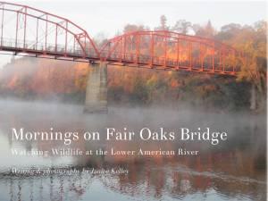 Mornings on Fair Oaks Bridge, Fair Oaks, American River, mornings, book, photography, wildlife
