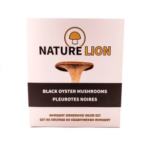 Black Oyster Mushroom Grow Kit