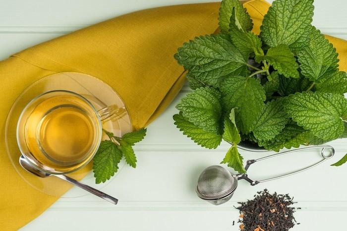 Infusion de mélisse pour soulager les nausées et les crampes intestinales.