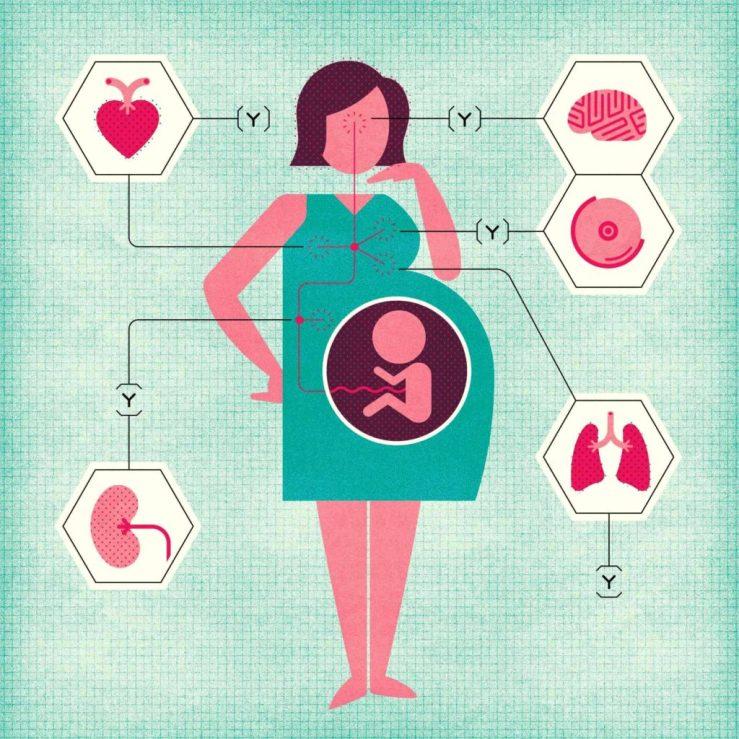 le microchimérisme foetal
