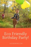 How to Host a Green Birthday Party