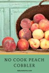 No Cook Peach Cobbler