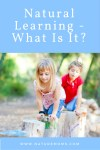 Natural Learning – What Is It?