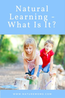 natural learning unschooling