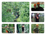 A Zip Lining Adventure in Ohio