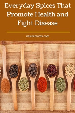 Everyday Spices That Promote Health and Fight Disease