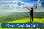 Green Goals for 2013