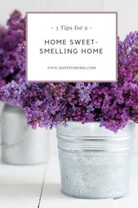 3 steps you use for a fresh and sweet smelling home for Things to make your house smell good