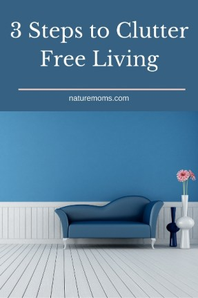 3 Steps to Clutter Free Living pin