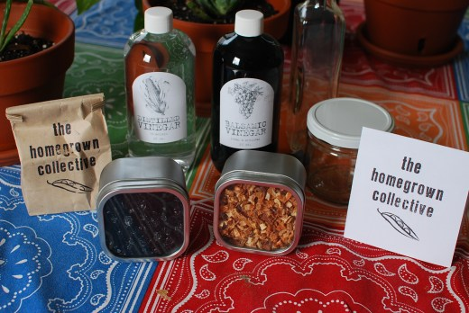 Vim and Vinegar Homegrown Collective Box