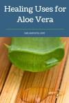 Aloe Vera – Nature's Super Plant