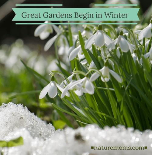 Great Gardens Begin in WInter