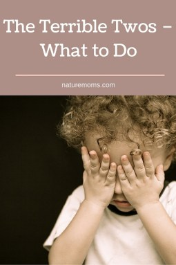 The Terrible Twos – What to Do