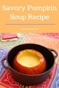 Savory Pumpkin Soup Recipe
