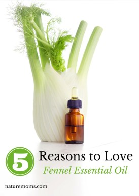 top benefits of Fennel Essential Oil