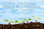 Why You Should Finally Start Building Your Garden
