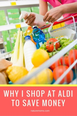 Shop Aldi Save Money