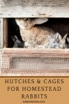 Hutches and Cages for Homestead Rabbits