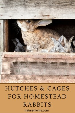 Hutches Cages for Rabbits