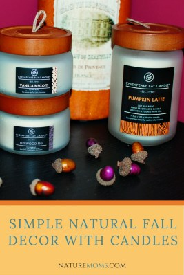 Fall Decor with Candles