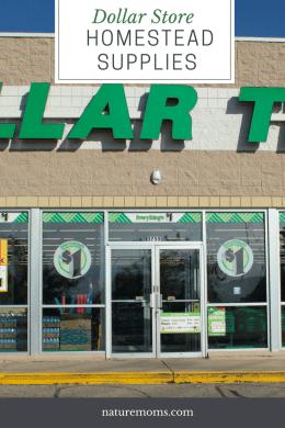 Dollar Store Homestead Supplies